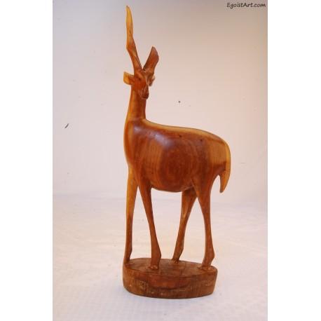 Afrykańska gazela