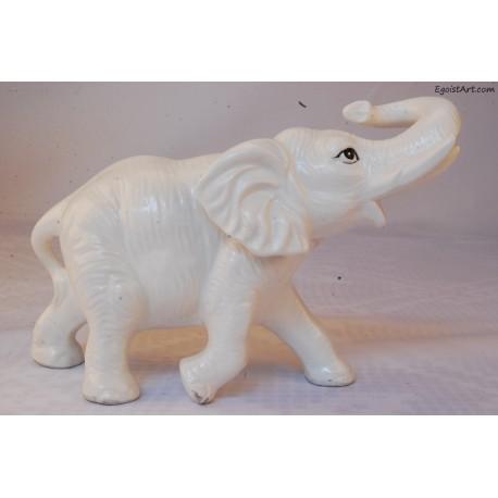 Biały słoń