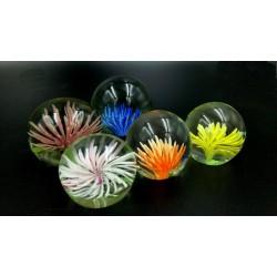 Przycisk szklana kula kwiatowa kolekcja
